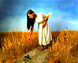 Ruth_Gleaning_Grain